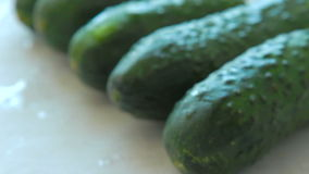 Large fresh cucumbers stock video footage