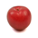 Large fresh ripe plum nectarine, healthy ingredient isolated on Stock Photography