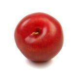 Large fresh ripe plum nectarine, healthy ingredient isolated on. White background Royalty Free Stock Photography
