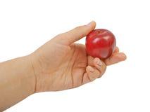 Large fresh ripe plum nectarine, healthy. Ingredient isolated on white background Royalty Free Stock Photos