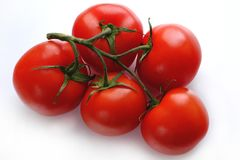 Large fresh tomatoes on branch. Good quality close up photo of fresh and shiny tomatoes on green branch, view from the top. Ripe tomatoes are placed on some pure royalty free stock image
