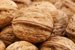 Large fresh walnuts. Some large appetizing and fresh walnuts Royalty Free Stock Photography