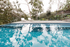Large fully tiled swimming pool with bush block reflections Stock Photos