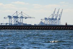 Large gantry cranes at the port of Gdansk, Poland. Stock Image