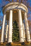 Large garden classical gazebo with Christmas tree in center and lights strung around columns against tree branches and very blue royalty free stock photography