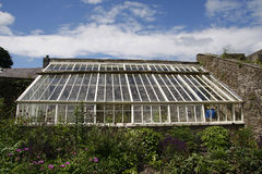 Large garden greenhouse Stock Image