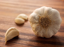 Large garlic head with a couple of peeled cloves Stock Photography