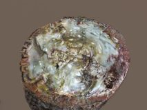 Large Geode Royalty Free Stock Photo