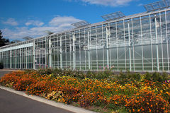Large glass greenhouse with a flowerbed Stock Photos