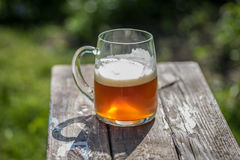 Large glass of microbrew beer on rustic wood table outside in sunshine. Glorious large mug of golden craft beer with suds on reclaimed wood table on sunny day Stock Photos