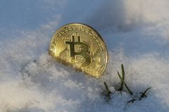 A Large Gold Bitcoin Token in snow Stock Photography