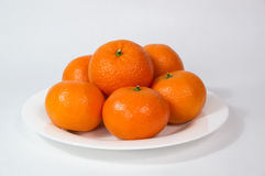 Large Golden tangerines on white plate Stock Image