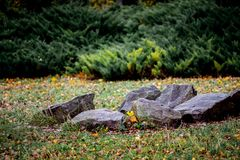 Large granite stones adorn the city park in the fall. Yellow lea royalty free stock images