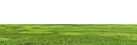 Large grass field to horizon isolated on white stock images