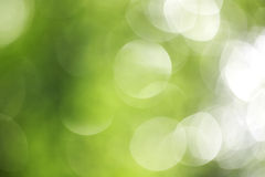 Large green bokeh. From tree Stock Photo