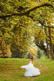 Large green branches hang over the bride whirling on the hill.  Stock Photos