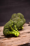 Large green broccoli on a black background Stock Image