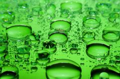 Large green drops Stock Images