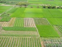 large green farm land Royalty Free Stock Image