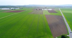 Large green field, flying over the field, growing plants, agriculture, Large green field on the background of a small. European city stock video footage
