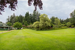 Large Green Lawn in Garden Stock Image