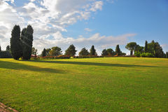 A large green meadow in the park Stock Photos