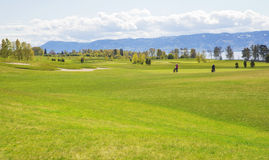 Large green professional golf course in europe Stock Photos