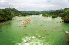 Large Green River Royalty Free Stock Photography