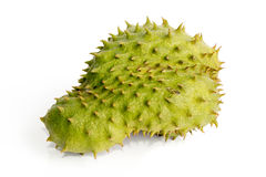 Large green soursop fruit isolated Royalty Free Stock Image