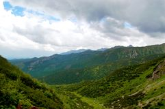 Large, green valley on a background of mountains Royalty Free Stock Images