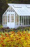 Large greenhouse stock images