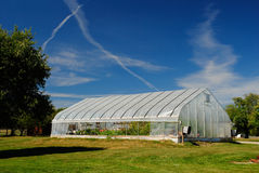 Large Greenhouse. Under blue skies, next to a tree Royalty Free Stock Photography