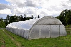 large greenhouse made of polycarbonate in the field on the background of trees stock image