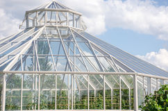 Large greenhouse from outside Stock Images