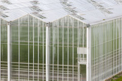 Large Greenhouse From Outside Stock Photo