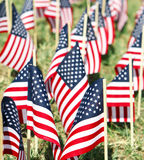 Large Group of American Flags - Vertical. A very shallow DOF shot of a large partiotic display of American Flags stuck into the ground Royalty Free Stock Photo
