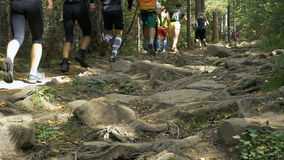 Large group of athletes run one behind other on a mountain trail among rocks stock video footage