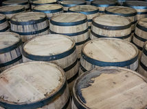 Large Group of Barrels Royalty Free Stock Photography
