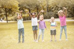 Large group of children poses to camera.  School friends. Royalty Free Stock Photo
