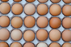 Large group of eggs in a cardboard tray. A large group of chicken eggs in a cardboard tray reveal a regular abstract pattern Stock Photo