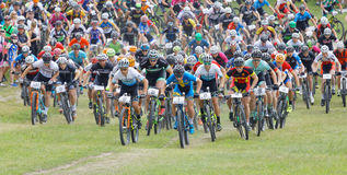 Large group of fighting mountainbike cyclists cycling uphill Royalty Free Stock Image
