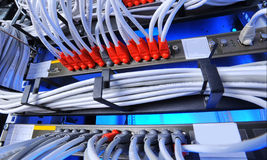 Large group of internet cabling in the data center stock image