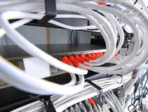 Large group of internet cabling in the data center royalty free stock image