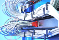 Large group of internet cabling in the data center Royalty Free Stock Photo