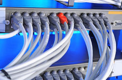 Large group of internet cabling in the data center royalty free stock photos