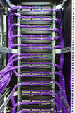 Large group of lilac utp cables Royalty Free Stock Image