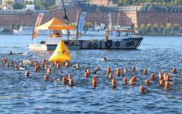 Large group of male swimmers wearing orange bathing caps. STOCKHOLM - AUG 23, 2015: Large group of male swimmers wearing orange bathing caps and a rescue boat at Royalty Free Stock Photo