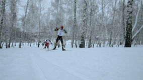 Large group men skiers slope in winter forest stock video
