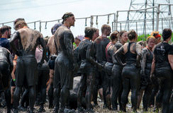 Large group of muddy people Stock Images