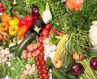 Free Large Group Of Vegetables Royalty Free Stock Photo - 11932305